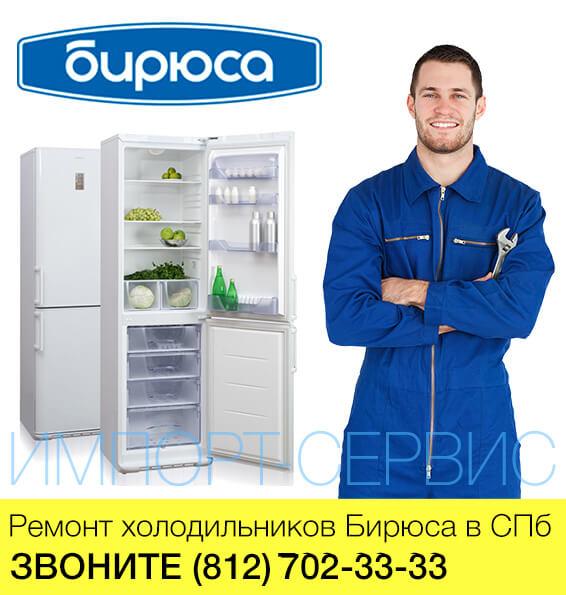 Ремонт холодильников Бирюса в СПб