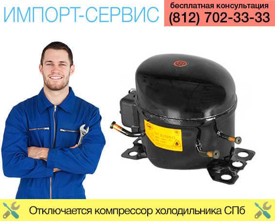Отключается компрессор холодильника Санкт-Петербург